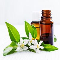 , Conseils en Naturopathie et Aromathérapie, Aroma-Nature, Aroma-Nature